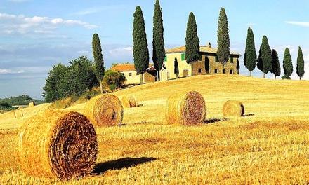 Montaione: 1, 2 o 3 notti per 2 persone in camera matrimoniale presso Agriturismo Borgo degli Orti