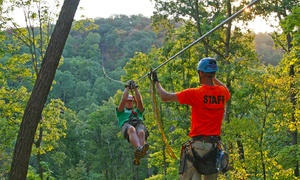 Grafton Zipline: Spring 2016 Zipline Tour for One, Two, or Four at Grafton Zipline (Up to 34% Off)
