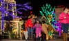 One Combo Ticket to Snow Mountain and Christmas at Stone Mountain