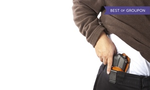 Up to 58% Off a Concealed Weapons Class  at Jacksonville Gun Runners , plus 6.0% Cash Back from Ebates.