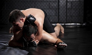 Subconcious BJJ: One Month of Unlimited Brazilian Jiu-Jitsu Training Classes or 10 Classes at Subconscious BJJ (Up to 65% Off)