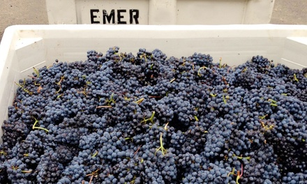 $39 for a Tour, Wine and Cheese Tasting, and Take-Home Bottle of Wine at Emerson Vineyards ($62 Value)