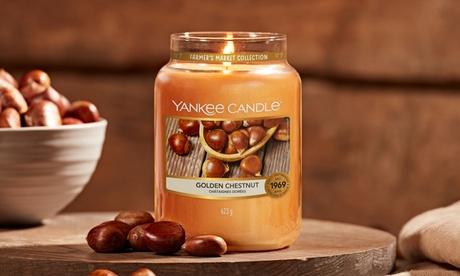 Fino a 4 candele grandi Yankee Candle da 623 g