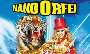 NandoOrfei: Circo NandoOrfei dal 21 ottobre al 2 novembre a Desio (sconto fino a 68%)