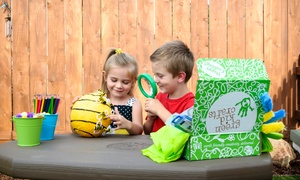 Green Kid Crafts: Three- or Six-Month Art and Science Subscription Box for Kids from Green Kid Crafts (Up to 41% Off)