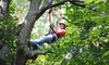 Skyward Adventures: Zipline Tours at Skyward Adventures, Inc. (Up to 59% Off). Two Options Available.