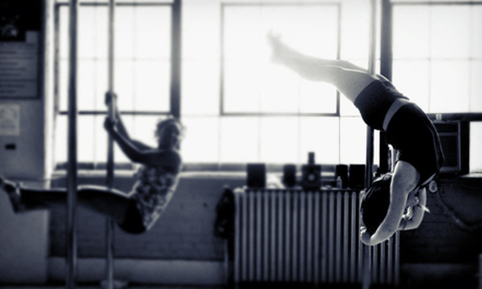 Pole Vixens Xtreme - Springfield: 5 or 10 Pole-Fitness Classes at Pole Vixens Xtreme (Up to 89% Off)