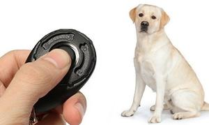 Click de dressage pour chien