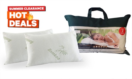 $25 for Two BambooCovered Memory Foam Pillows Don't Pay $129