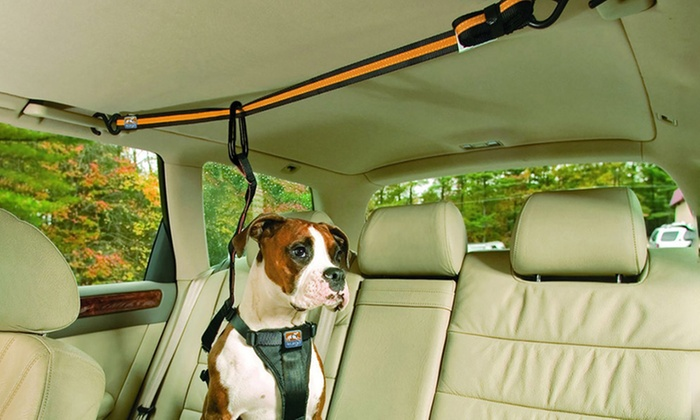 Sensual Sale: Easy Move Pet Car Seat Belt: One ($17) or Two ($29)