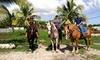 Up to 33% Off Horseback Riding at Happy Pony World