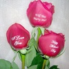 Up to 37% Off Flowers from Talk Ta Me Floral