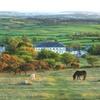 Dartmoor: 1 or 2 Nights with Breakfast
