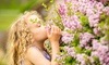 Up to 55% Off Admissions to Lilac Festival