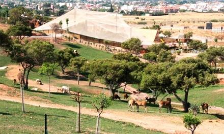 Entrada de día al zoológico para adulto y/o niño o senior en Terra Natura Murcia (hasta 38% de descuento)