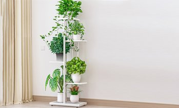 Five-Tier Metal Plant Stand