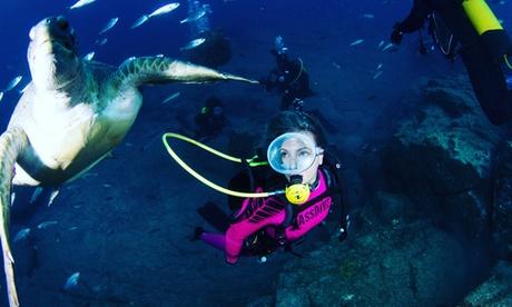 Bautismo de buceo para 2 personas en Radazul con reportaje fotográfico por 34,90 € con Deep Ocean Diver Oferta en Groupon