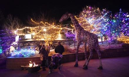 Electric Safari at Cheyenne Mountain Zoo on December 6, 7, 8, 16, 17, or 18