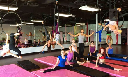 Two, Five, or Eight Pole Fitness, Aerial Silks, or Lyra Classes at Polecats Aerial Fitness (Up to 67% Off)