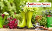 Un bon d'achat d'une valeur de 50 € au prix de 25 € à valoir sur le site Willemse France