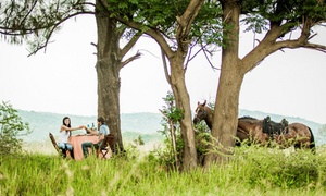 Horse and Trails Unlimited: Scenic Horse Trail from R329 for Two at Horse and Trails Unlimited (Up to 50% Off)