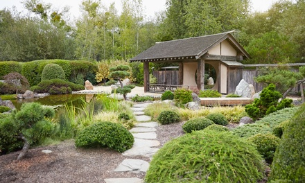 Online Landscape and Garden Design Course with Vizual Coaching Academy (90% off)