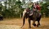 Google Treks Nepal (P) Ltd - Kathmandu: Nepal: 3 Nights with Breakfast, Tour and Transfers at Kathmandu Eco Hotel