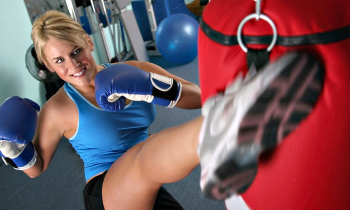 Premier Martial Arts - Premier Martial Arts: 10 or 20 Kickboxing Classes with Gloves at Premier Martial Arts (Up to 87% Off)