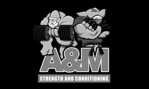 A&M Strength & Conditioning: Up to 80% Off Personal Trainer and Bootcamp at A&M Strength & Conditioning