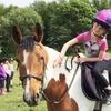 Two-Hour Pony Club Experience