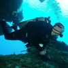 23% Off Open-Water Diving Course