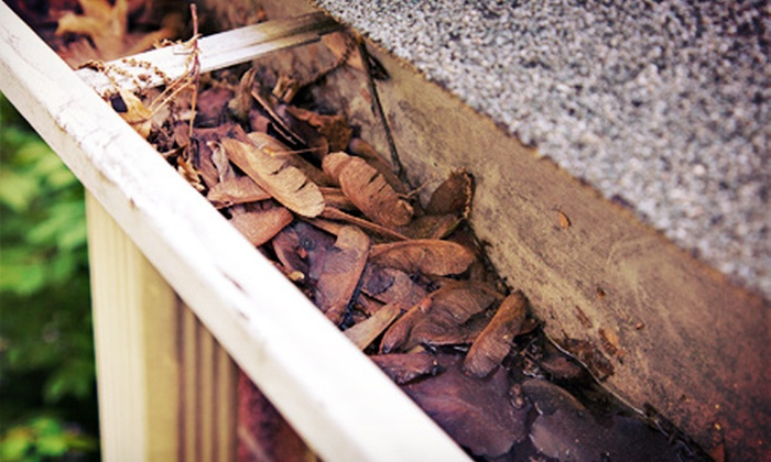East Coast Gutters - South Gate: $125 for Cleaning of Up to 125 Feet of Gutters from East Coast Gutters ($250 Value)