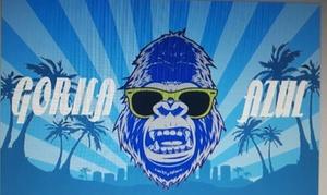 Gorila Azul: Bono de 3, 5 o 10 lavados exteriores desde 6,95 € en Gorila Azul