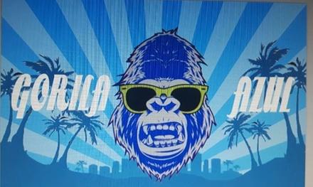 Bono de 3, 5 o 10 lavados exteriores desde 6,95 € en Gorila Azul