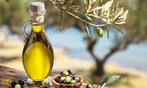 Pre-Order: Fruiting Edible Olive Tree