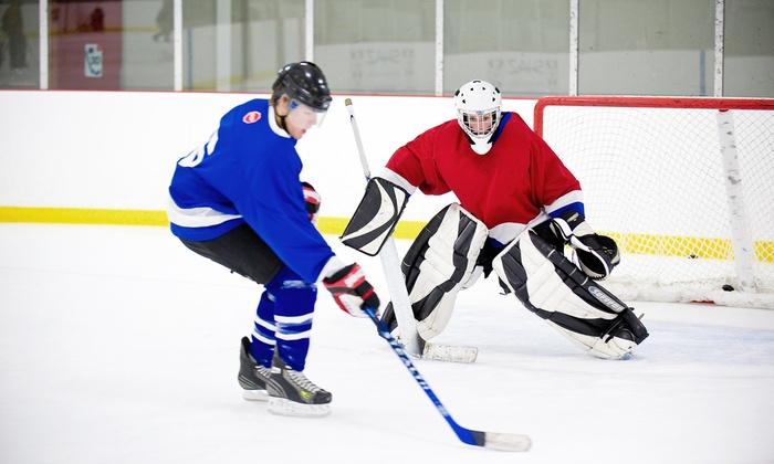 Complete Hockey Development Centre - Stittsville - Basswood: Three or Five Skate Sharpening at Complete Hockey Development Centre (Up to 46% Off)