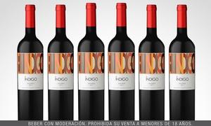 Bodega Don Cristóbal: $449 en vez de $1074 por 6 botellas de vinos El Indigo a elección en Bodega Don Cristóbal