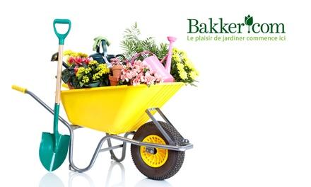 Bon d'achat de 40 € à 20 € valable pour vos plantes, fleurs et accessoires pour végétaux sur le site de Bakker
