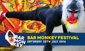 Bar Monkey Festival: One Adult and Child Ticket to Bar Monkey Festival, Saturday 30 July at DLR Leisure Centre