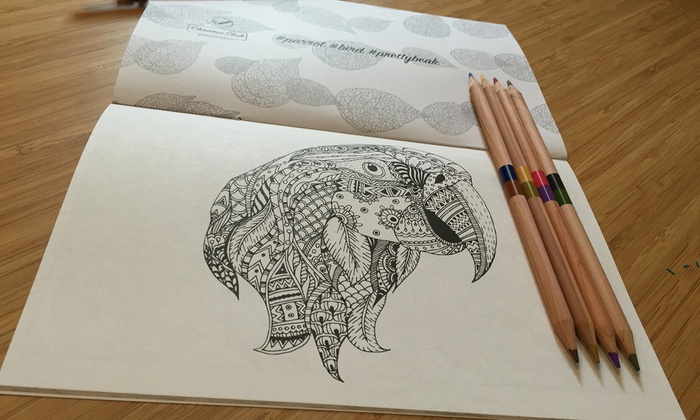 Coloring book subscription chroma club groupon Coloring book subscription