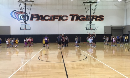 $75 for Pacific Tigers Basketball Camp for Girls Ages 6–14 on June 12–15 ($105 Value)