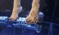 15 Min. Fish-Spa-Fußpflege für 1 oder 2 Personen bei Relaxed Feet (bis zu 22% sparen*)