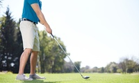 Up to Two One-Hour PGA Golf Lessons with Video Analysis from Russell Heritage Golf Professional (Up to 56% Off)