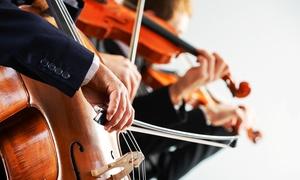 Nymphenburger Sommer: 1 Ticket für ein Konzert nach Wahl während des Kammermusikfestes Nymphenburger Sommer (50% sparen)