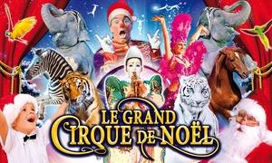 CIRQUE DE NOEL: 1 place en tribune d'honneur pour l'une des représentations du Grand Cirque de Noël à Montpellier à 10€ au lieu de 28€