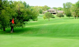 9 Or 18 Holes Of Golf And Cart For Two Or Four At Maple Creek Golf Course (up To 47% Off)