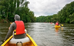 Half Off Kayak Experience for One or Two People at Saltsburg Kayak & Canoe Outfitters, plus 6.0% Cash Back from Ebates.