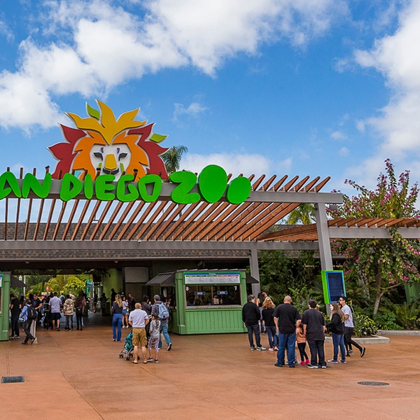 Zoo Passes 2 Options Available San Diego Zoo Groupon