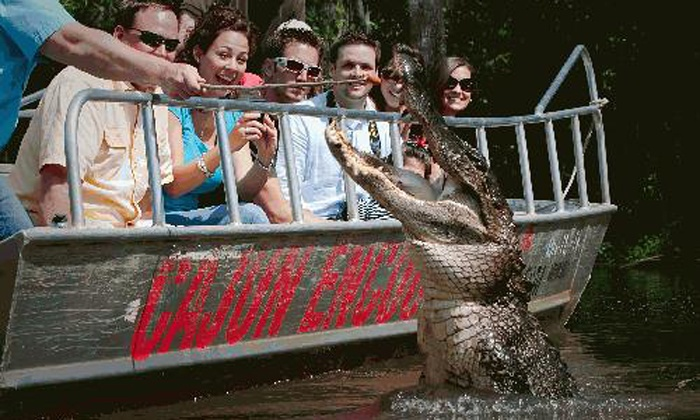 Swamp Tour With Gift Store Spend Cajun Encounters Groupon
