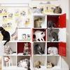 兵庫県/甲子園口 ≪猫カフェ 1時間(猫のおやつ付)/他1メニュー≫